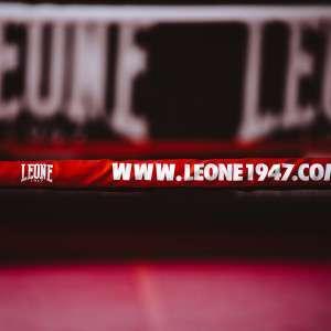 AT601 03 1 Leone1947