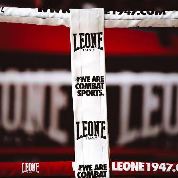 AT603 04 1 Leone1947