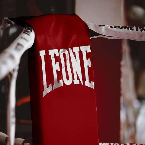 AT604 49 2 Leone1947